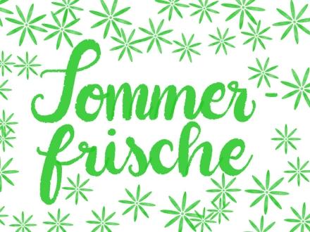 Lettering Sommerfrische. Zeichnung und Foto: Janne Klöpper