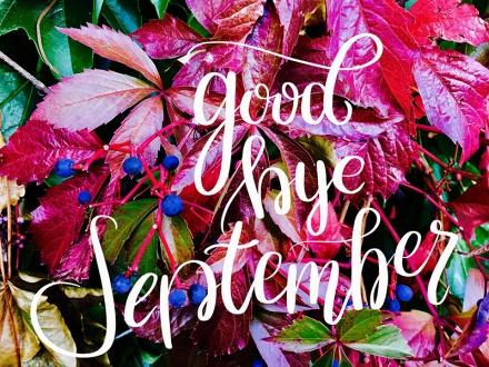Rotes Weinlaub mit Lettering-Schriftzug Good bye september. Foto und Lettering: Janne Klöpper