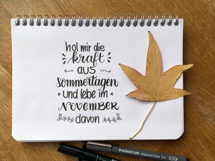 Lettering der Liedzeile Hol mir die Kraft aus Sommertagen und lebe im November davon. Text: Klaus Hoffmann. Zeichnung und Foto: Janne Klöpper