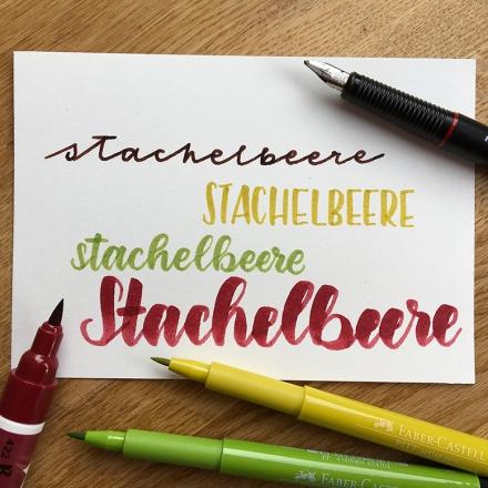 Lettering des Wortes Stachelbeere in vier Varianten: Rotring Artpen, Faber-Castell Pitt Artist Pen, Ecoline Brushpen. Zeichnung und Foto: Janne Klöpper